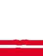 BC RSC Brno - logo